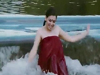 Exotic Indian Wet